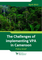 Challenges in Implementing the VPA in Cameroon