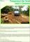 Cameroun: Résumé du rapport annuel 2010 sur la transparence dans le secteur forestier- Français