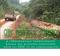 Guide Pratique de Formation OIF pour les OSC