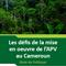Les défis de la mise en oeuvre de l'APV au Cameroun - Note de Politique