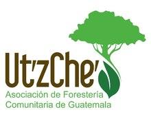 Asociación de Forestería Comunitaria de Guatemala Ut'z Che'